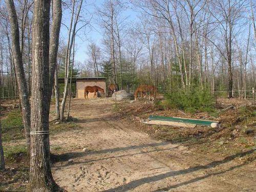 Pony shed