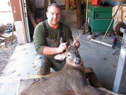 Tims deer 1