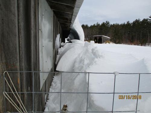 3152018 snowwave